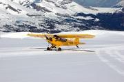 Piper J-3 Cub (F-PERB)