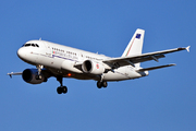 Airbus A319-112CJ (MM62243)