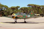 Yakolev Yak-18A (F-AZPY)