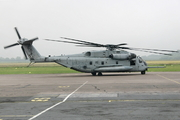Sikorsky S-65 (H-53/CH-53) Sea Stallion/Super Stallion/Sea Dragon