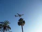 Boeing 767-232/BDSF (N105DA)