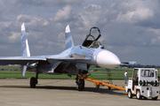 Sukhoi Su-27 (319)