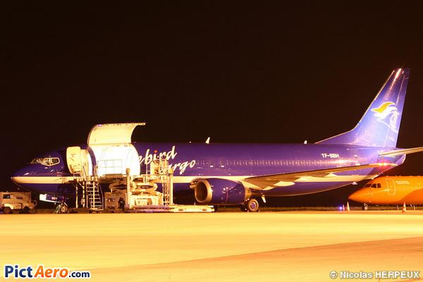 Boeing 737-46JF (Bluebird Cargo)