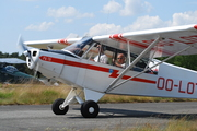 Piper L-18C Super Cub (OO-LOT)