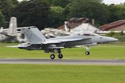 Boeing F/A-18F Super Hornet (AD-216)