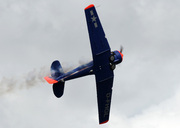 North American AT-6D Texan (D-FHGL)