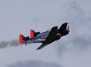 North American AT-6D Texan (D-FHGK)