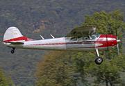 Cessna 195B (N3037B)