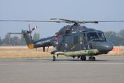 Westland WG-13 Lynx SH-14D (260)