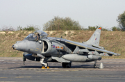 British Aerospace Harrier GR7 (ZD431)