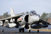 British Aerospace Harrier GR7 (ZD411)