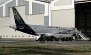 Airbus A319-133 (SX-OAS)