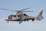 Eurocopter AS-365/565 Dauphin 2/Panther/Pantera (HM-1/SA-565)