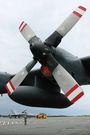 Lockheed CC130E Hercules (C-130E/L-382) (313)
