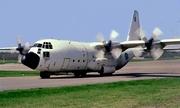 Lockheed C-130E Hercules (84001)