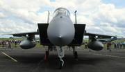 McDonnell Douglas F-15C Eagle (84-0010 LN)