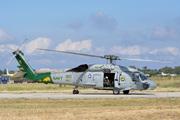 Sikorsky S-70 (H-60 Black Hawk/Seahawk)