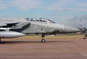 Panavia Tornado F3 (ZE163)