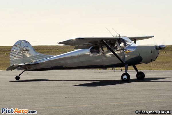 Cessna 170 A (Miller Ron G.)