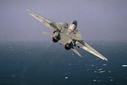 Grumman F-14A Tomcat (100)