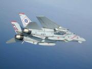 Grumman F-14A Tomcat (102)
