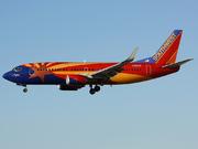 Boeing 737-3H4 (N383SW)