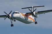 De Havilland Canada DHC-8-315Q Dash 8