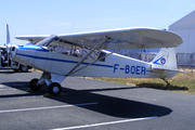 Piper PA-19 Super Cub (F-BOER)
