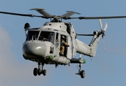 Westland WG-13 Lynx HAS2(FN) (260)