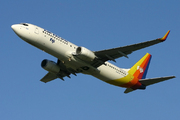 Boeing 737-8X2(WL) (DQ-FJH)