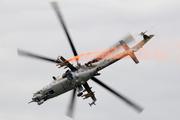 Mil Mi-24 Hind (0981)