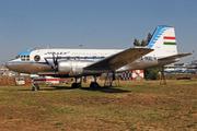 IL-14G (HA-MAL)