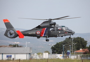Eurocopter AS-365N-3 Dauphin 2 (F-GVHN)