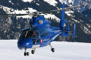 Eurocopter AS-365N-2 Dauphin 2 (HB-XQW)