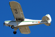 Piper PA-18-150 Super Cub (EC-JJL)