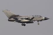Panavia Tornado IDS (MM7007)