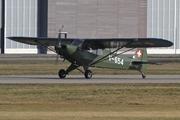 Piper PA-18   (HB-PAV)