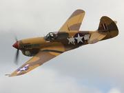 P-40F Warhawk (VH-PIV)