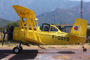 Grumman G-164B (F-GSYB)