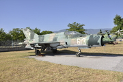MiG-21/J-7 Fishbed/Mongol