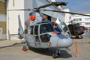 Eurocopter AS-565SA Panther (519)