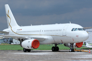 Airbus A319-133X/CJ (D-ADNA)