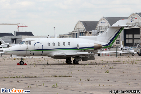 Hawker Siddeley HS-125-3B  (Private / Privé)