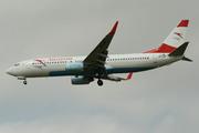 Boeing 737-8Z9(WL)  (OE-LNP)