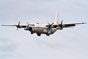 Lockheed C-130H-30 Hercules (L-382T) (7T-WHD)