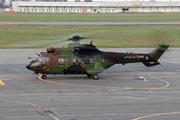 Eurocopter EC-532UL Cougar (2301)