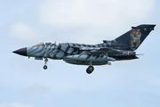 Panavia Tornado ECR (46+48)