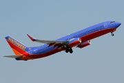 Boeing 737-8H4/WL (N8313F)