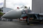 Sukhoi Su-27UB (07)