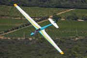 Schleicher ASK-13 (F-CDYO)